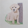 Labrador Puppy Cushion